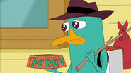 Perry is very sad at leaving Phineas and Ferb