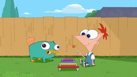 Baby Perry and Phineas enjoy playing music.jpg