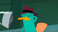 Agent P punches Me Negative