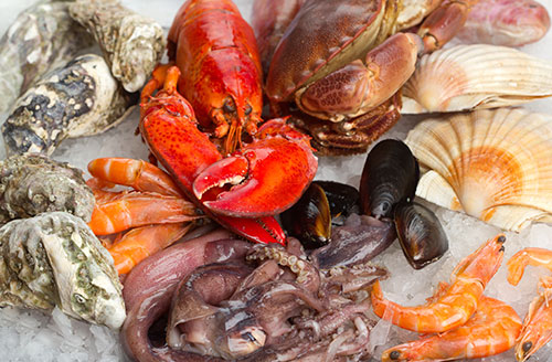 File:Shellfish-and-Crustaceans.jpg