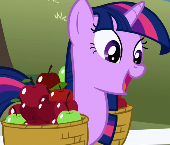 File:Twilight Sparkle overjoyed about tickets S1E03.png