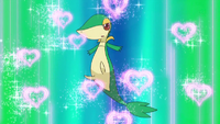 Snivy Attract