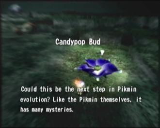 File:Reel5 Candypop Bud.png