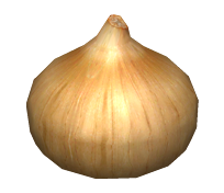 File:Onion Replica.png