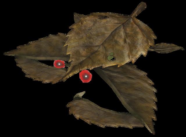 File:Desiccated skitter leaf.png