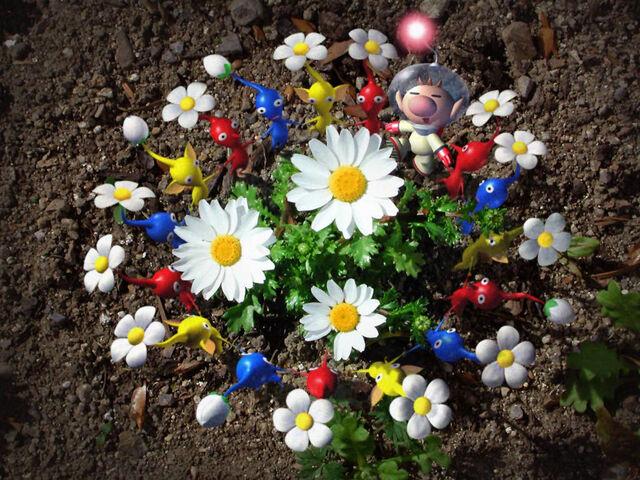 File:Pikmin flower dance.jpg