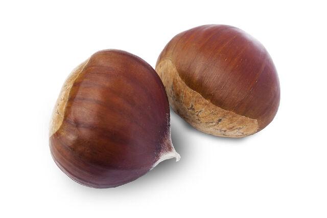 File:Sweet chestnut.jpg
