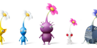 Pikmin family