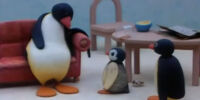 Pingu and Pinga Stay Up