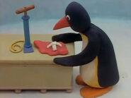 Hello,Pingu21