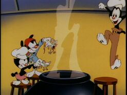 Animaniacs Stew