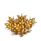 Farm-wheat-ripe