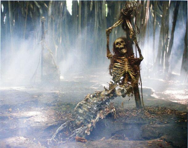 File:Mermaid skeleton.jpg