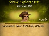 Straw Explorer Hat
