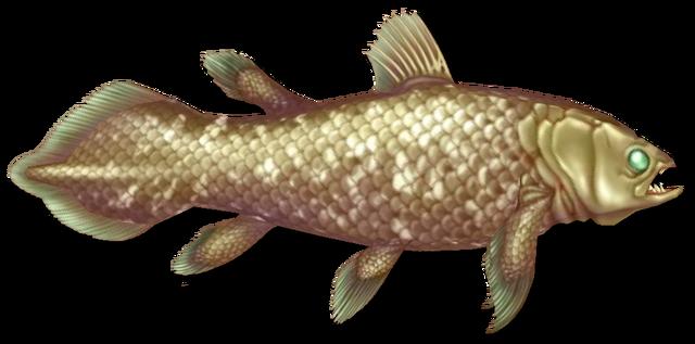 File:Fish 20.png