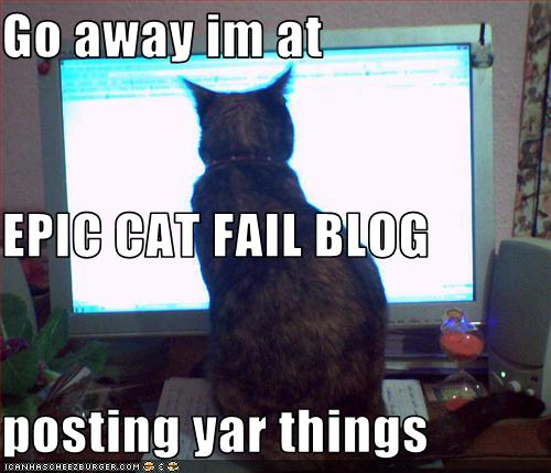 File:Epic cat blog.jpg