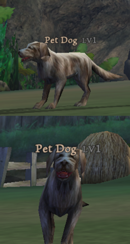 File:PetDog.png