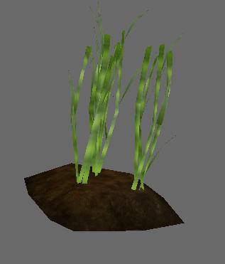 File:Sugarcane.PNG