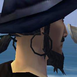 File:Onyx large ear loop.jpg
