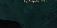 Big Alligator