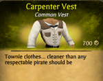 Carpenter vest