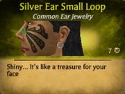 SmallSilverLoopDiscontinued