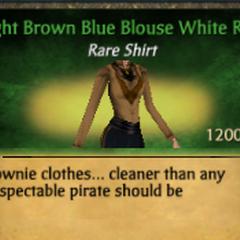 Light Brown Blue Blouse White Ruff