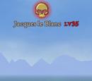 Jacques le Blanc