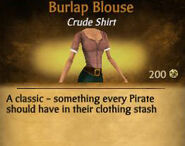 Burlap Blouse