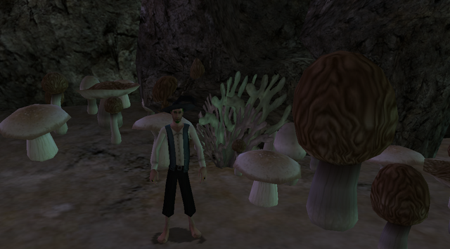 File:MushroomGarden.png