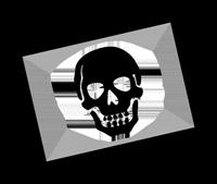 File:Skullpic200p.png