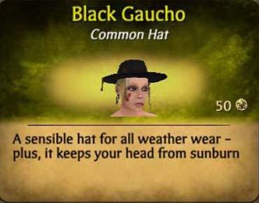 File:FGaucho.jpg