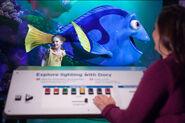 PixarDoryLightingImmersive
