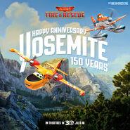 P2 Holiday Yosemite150 01 samoloty 2 plik