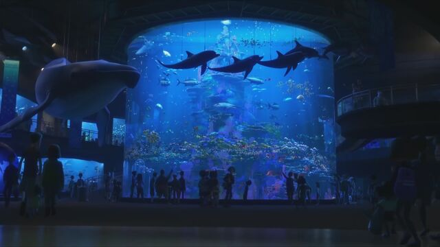 File:MLI aquarium.jpg