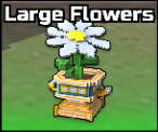 Large Flowers