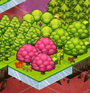 TreesAndAnimals