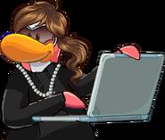 Faye Laptop