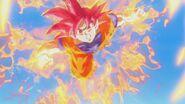 Son Gokū Super Saiyanin God (11)