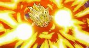 Goku 24