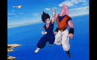 Vegetto vs Bu