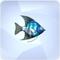 Angelfish.png