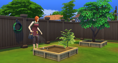 Simka w ogrodzie.png
