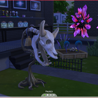 Nieżyjący Krowo-kwiat<sup class=