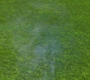 Special Effect - Steam Jet Medium