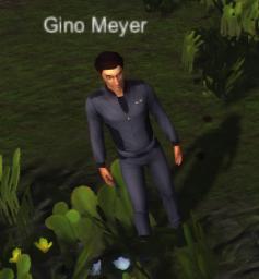 File:Gino Meyer.PNG
