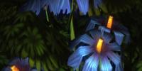 Gravity Flower