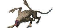 Lupus Devilwolf