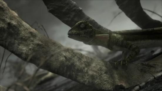 File:Lizard.png