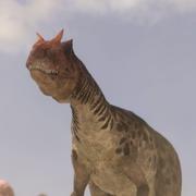 AllosaurusPortrait